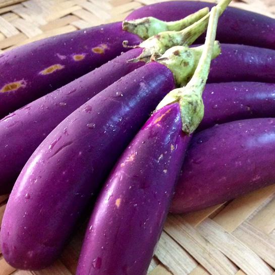 mini-eggplant